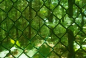 Notre vie peut toujours être de coueur verte, mais attention de ne pas tomber dans une prison de la même teinture !